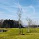 Frühling Golfpark Gut Hühnerhof2